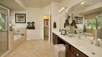 Master Bathroom - The San Gabriel Model in Georgetown Design Center Tilson Custom Home Photo