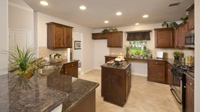 Kitchen - The San Gabriel Model in Georgetown Design Center Tilson Custom Home Photo