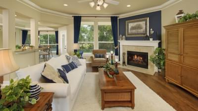 Family Room - Hidalgo  Tilson Custom Home Photo
