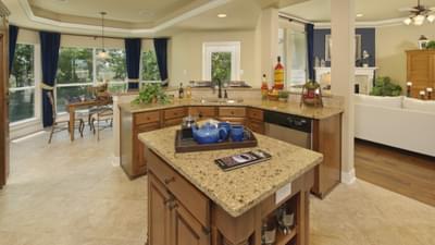 Kitchen - Hidalgo Tilson Custom Home Photo